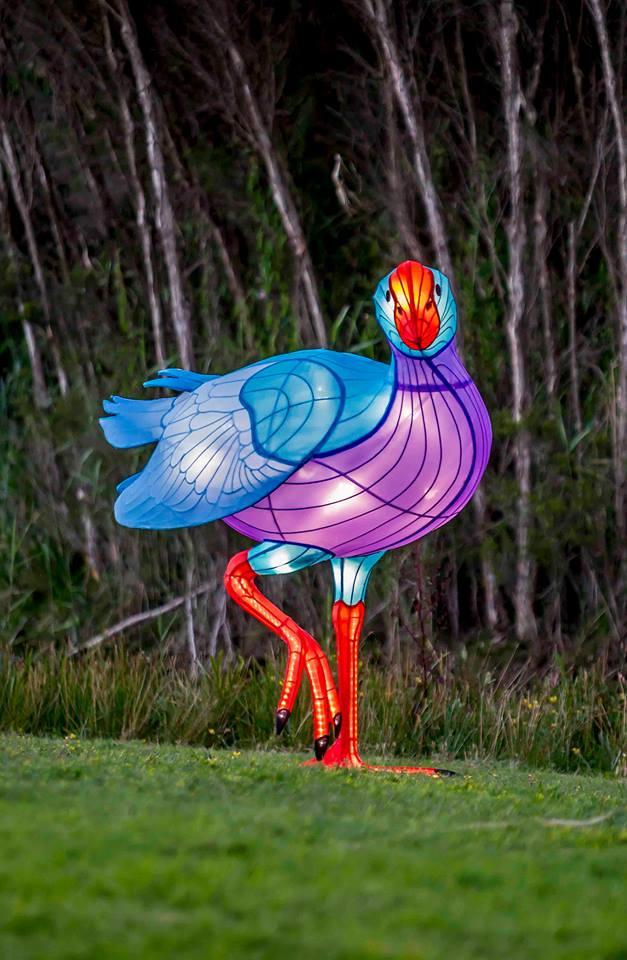 bird-lantasia