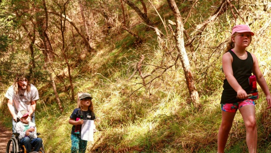 Bushwalking with a wheelchair  (Share your adventure)