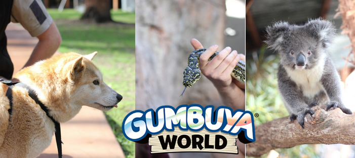 Gumbuya World: A Winter Adventure